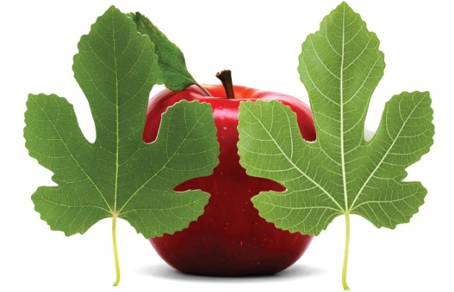 fig leaves and apple