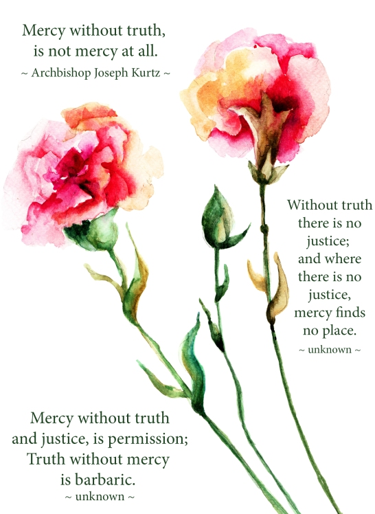 mercy and truth_for wordpress